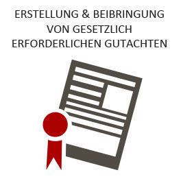 gesetyliche-gutachten-castus-264